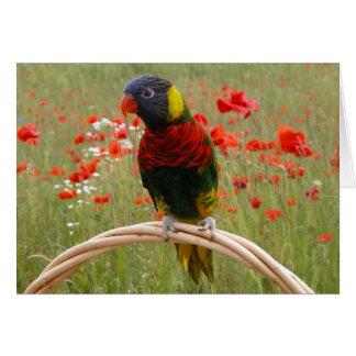 Happy Birdday! Card