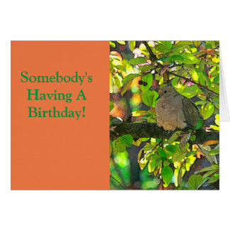 HAPPY BIRTHDAY/A LITTLE BIRD TOLD ME.... CARD