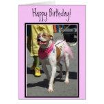 Happy Birthday American Bulldog greeting card