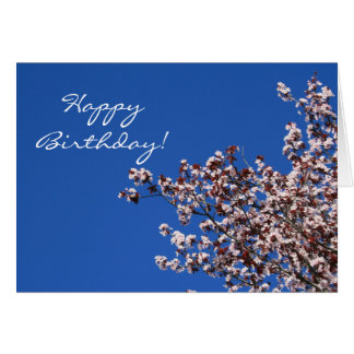 Happy Birthday Apple Blossoms Greeting card