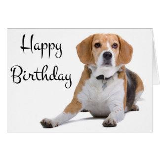 beagle birthday cards  zazzle, Birthday card