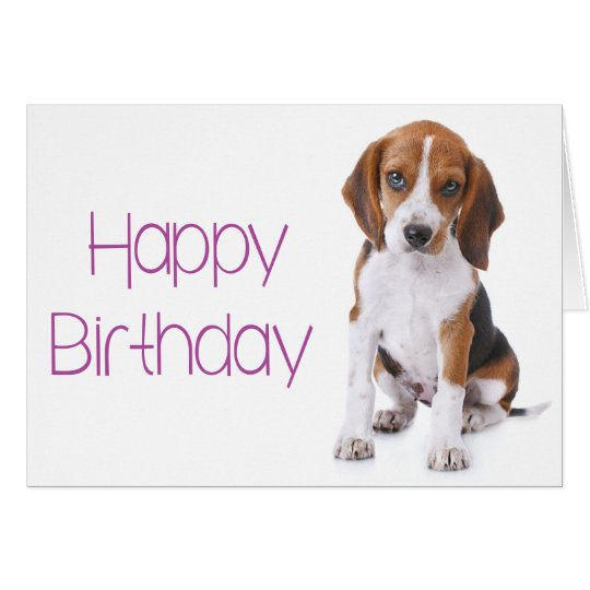 Happy Birthday Images With A Beagle And Cake And Gifts