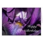 Happy Birthday Bearded Iris Card