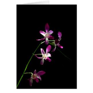 Happy Birthday, Beautiful ~ elegant orchid card