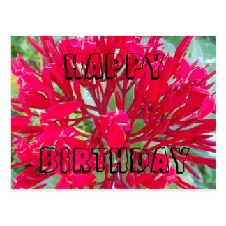 Happy Birthday Beautiful Red flowers Postcard