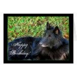 Happy Birthday Belgian Shepherd greeting card