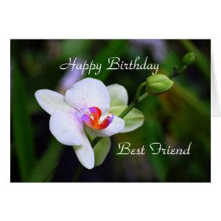Happy Birthday Best Friend Phalaenopsis Orchid Car Card