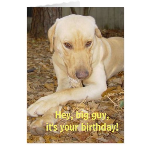 Happy Birthday Big Guy Card