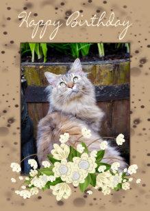 Happy Birthday Card With Cat Birthd
