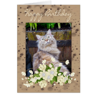 Happy Birthday, Birthday Card With Cat, Cat Birthd