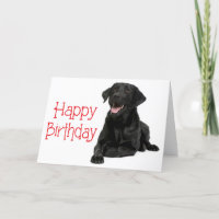 Happy Birthday Black Labrador Puppy Dog - Verse Card
