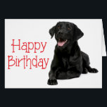 """Happy Birthday Black Labrador Puppy Dog - Verse Card<br><div class=""""desc"""">Brighten someone&#39;s birthday with a Labrador smile. This fun canine birthday card features an image of a happy black Labrador Retriever highlighted against a crisp white background with Happy Birthday printed in a bold red font. The Inside of the card is printed in an easy-to-read red font and says: Hope...</div>"""