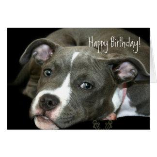 Happy Birthday Blue Pitbull Puppy greeting card