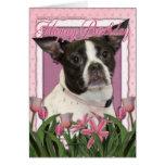 Happy Birthday - Boston & Rat Terrier - Jazy Greeting Cards