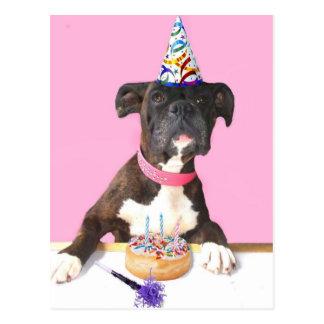 Happy Birthday Boxer dog postcard