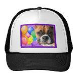 Happy Birthday Boxer hat