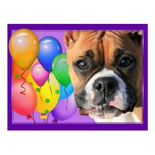 Happy Birthday Boxer Postcard