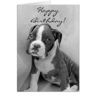 Happy Birthday Boxer puppy Card