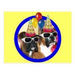 Happy Birthday Boxers postcard