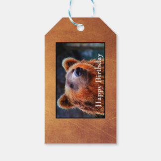 Happy Birthday Brown Bear Portrait Wildlife Photo Gift Tags