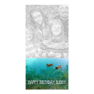happy birthday buddy (two ducks) card