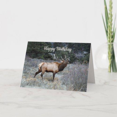 Happy Birthday, Bull Elk Bugling Card