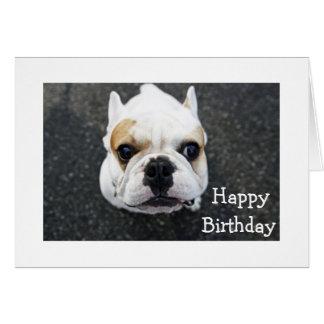 Happy Birthday Bulldog Greeting Card - Verse