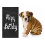 Happy Birthday Bulldog Puppy Chalkboard Postcard
