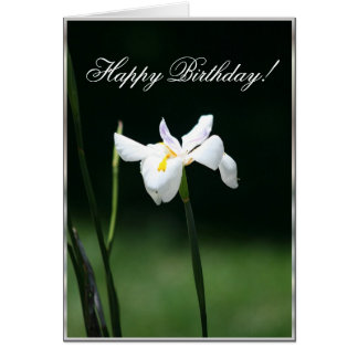 Happy birthday Butterfly Iris greeting card