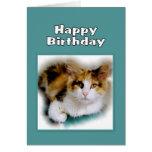 Happy Birthday Calico Cat Greeting Card