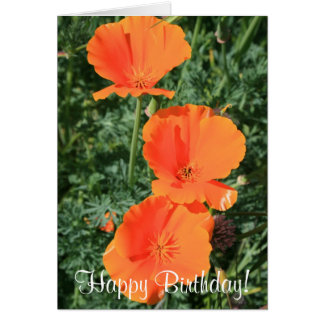 Happy Birthday California Poppies greeting card