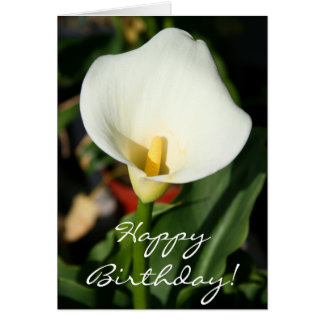 Happy Birthday Cana Lily Greeting Card