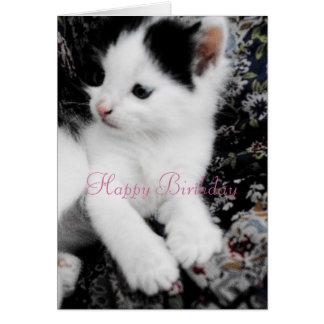 Happy Birthday Card features Pretty Manx Kitten