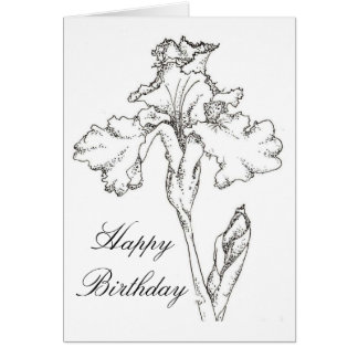 Happy Birthday Card Iris Spring Flower Drawing