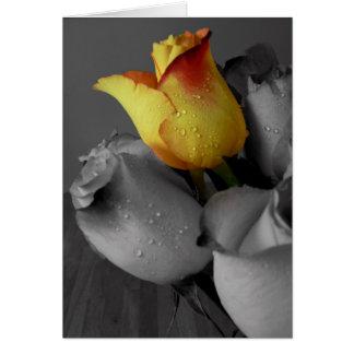 Happy Birthday Card-Rose Card