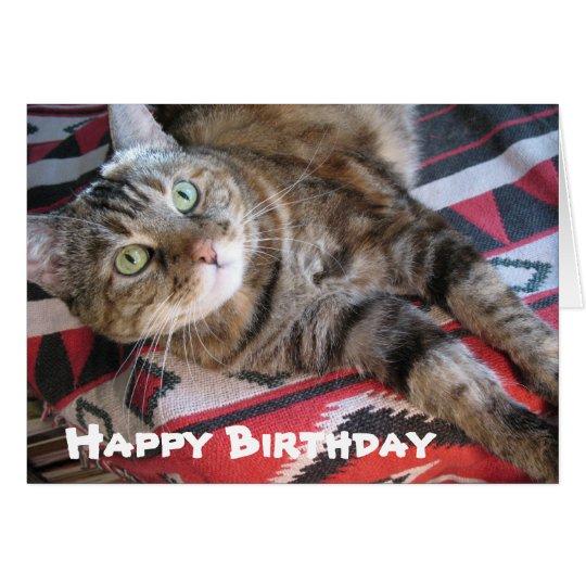 Happy Birthday Cat Card