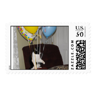 Happy birthday cat leave my balloons alone postage