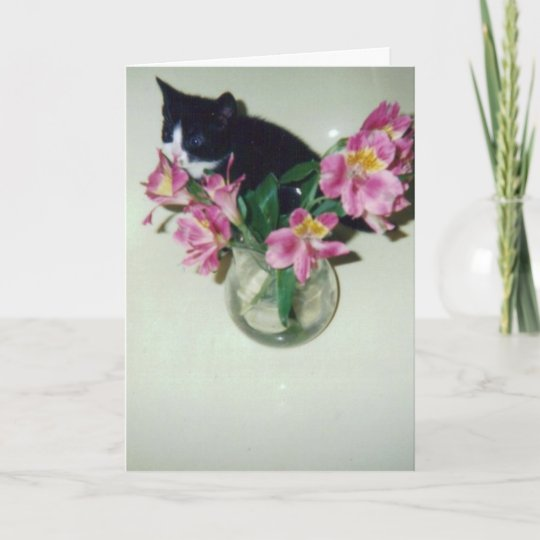 Happy Birthday Cat With Flowers In Vase Card Zazzle