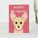 Happy Birthday Chihuahua card