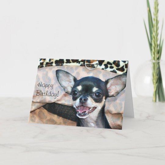 Happy Birthday Chihuahua Greeting Card Zazzle