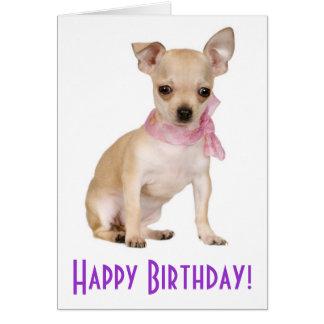 Happy Birthday Chihuahua Puppy Dog Greeting Card