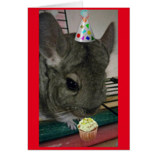 Happy Birthday Chinchilla Card