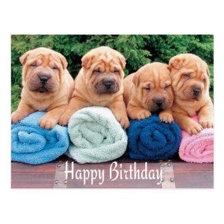 Happy Birthday Chinese Shar Pei Puppy Dog Postcard