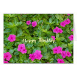 Happy Birthday Christian Card Pinks