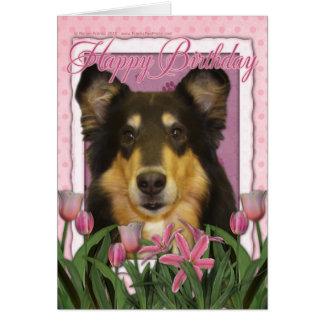 Happy Birthday - Collie - Caroline Cards
