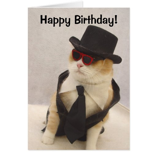 Ugly Birthday Cat: Happy Birthday, Cool Cat! Card