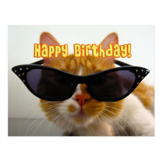 Happy Birthday - Cool Cat in Sunglasses Postcard