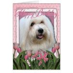 Happy Birthday - Coton de Tulear Greeting Card