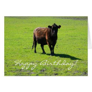 Happy Birthday Cow greeting card