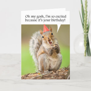 Happy Birthday Cute Squirrel in Party Hat Holiday Card